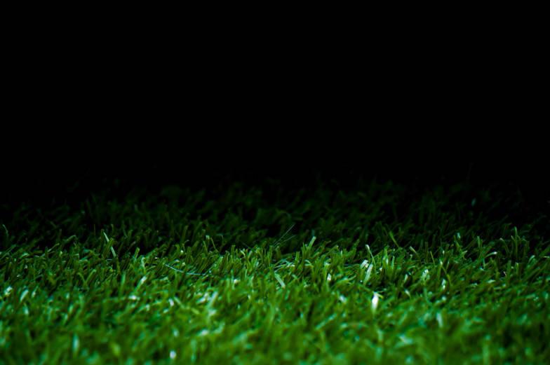 green grass display background